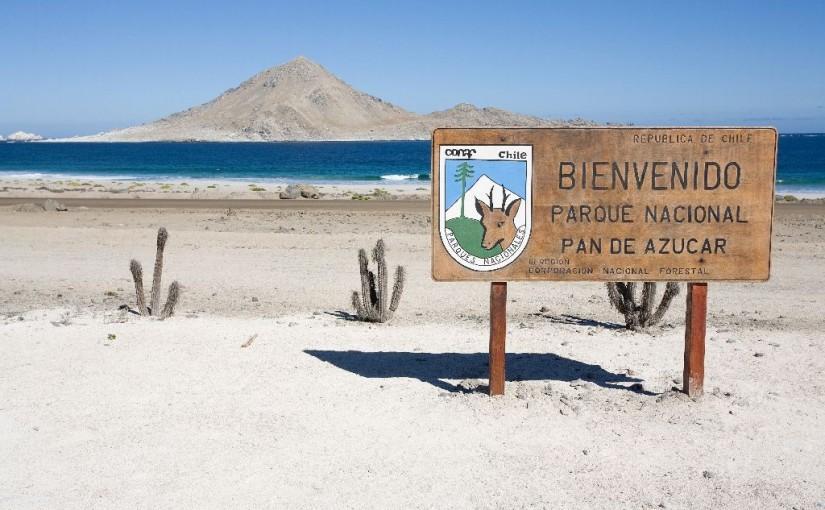 Reisebericht Chile August 2012 Frank Derer