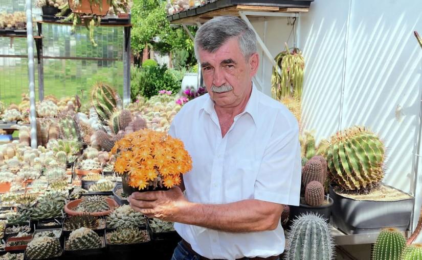 Heinz Barz im Teckboten: Auch ein Kaktus will gepflegt sein